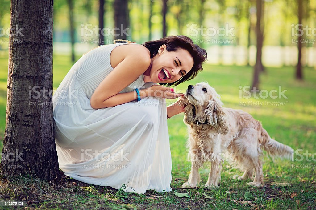 Beautiful woman in the autumn forest playing with her dog stock photo