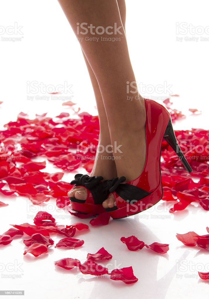 Beautiful Woman Legs on Rose Petals royalty-free stock photo