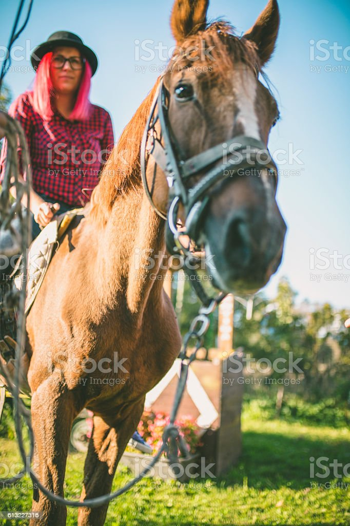 Beautiful woman on a horse stock photo