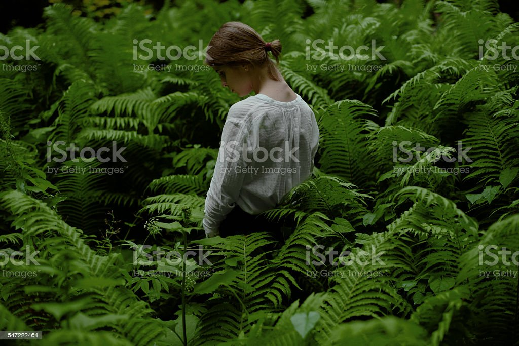Beautiful woman posing looking down among ferns in the woods stock photo