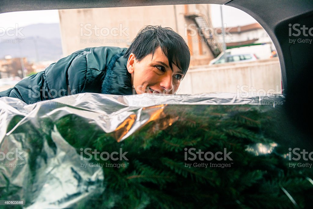 Beautiful Woman Putting Christmas Tree into Car, Europe stock photo