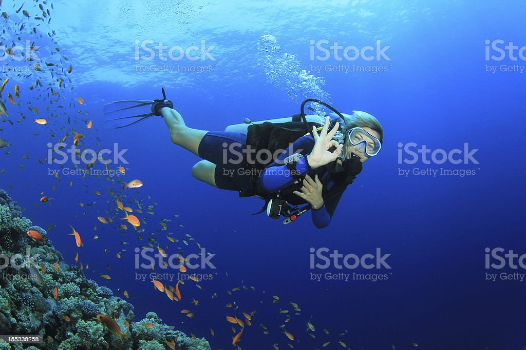 Beautiful Woman Scuba Diving stock photo