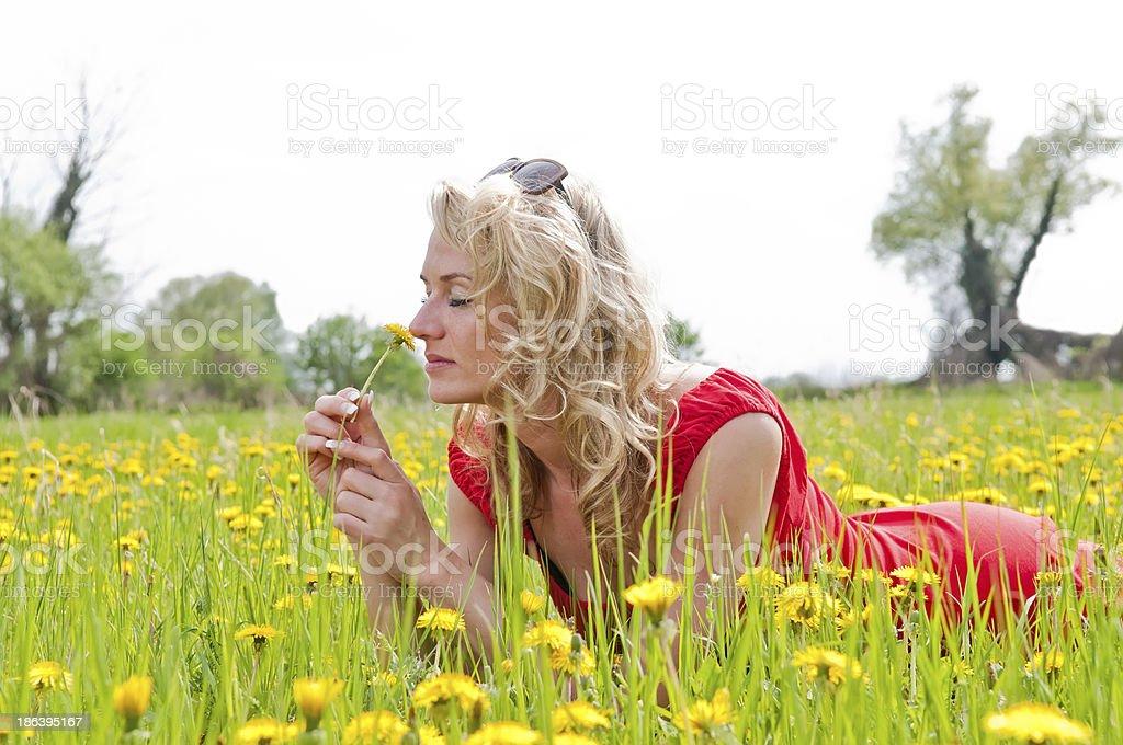 beautiful woman with dandelion stock photo