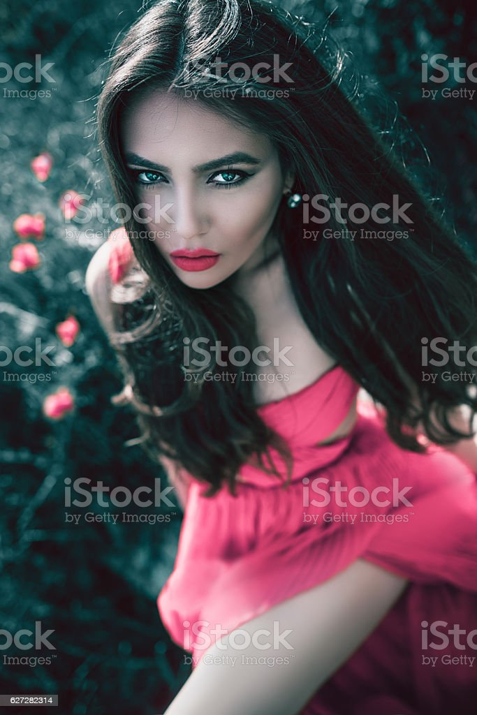 Beautiful Woman with Red Dress Sitting in Poppy Meadow stock photo
