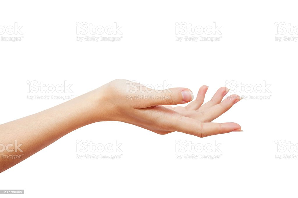 beautiful woman's hand holding blank space isolated stock photo