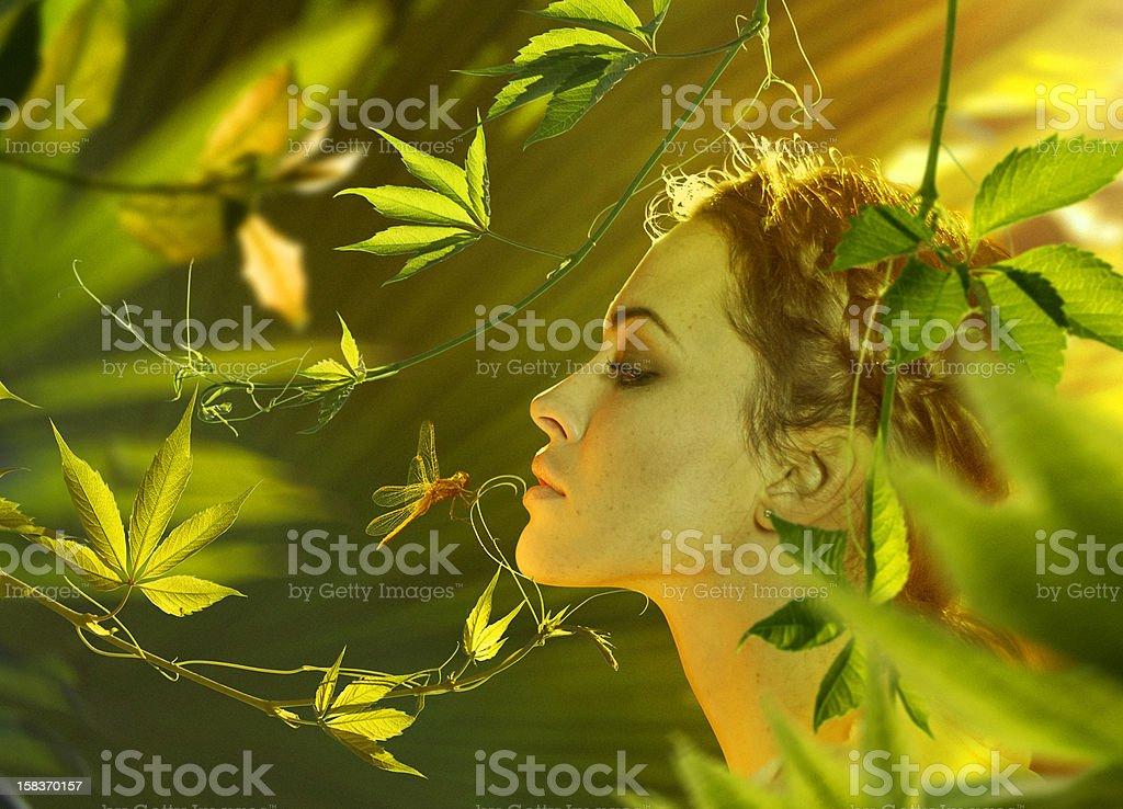 Beautiful women in nature stock photo