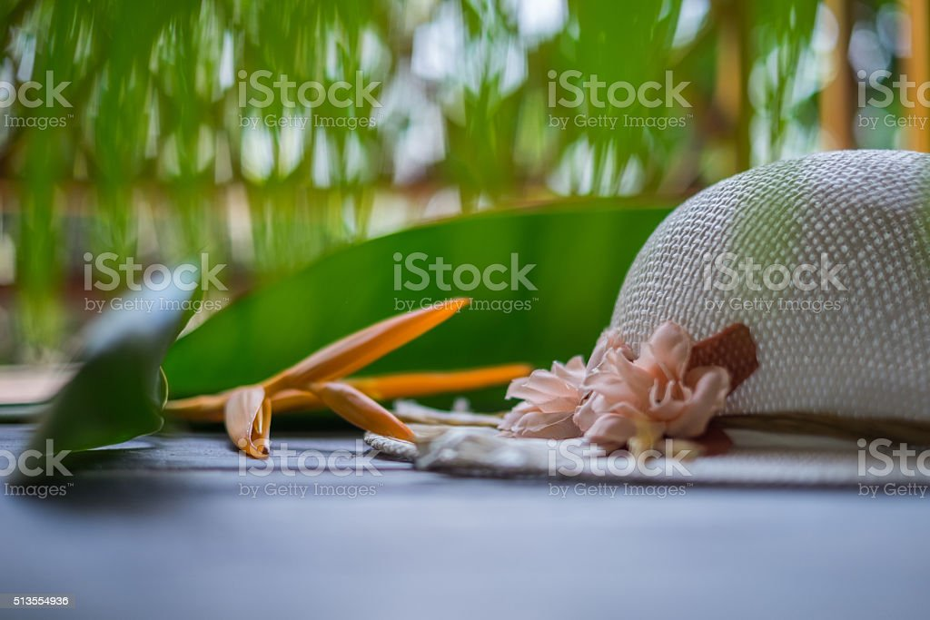 beautiful women sun hat with exotic blurry backgraund stock photo