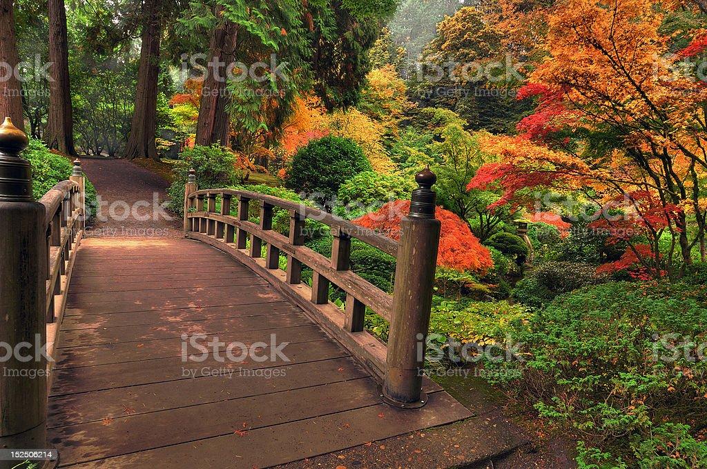 Beautiful wooden Bridge in autumn stock photo