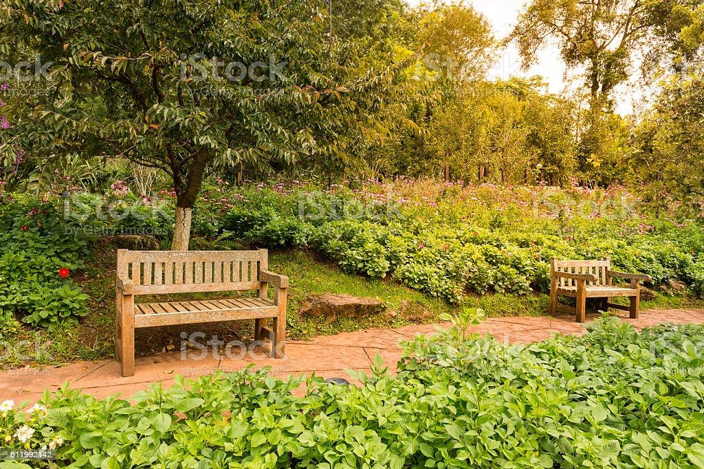 Beautiful wooden garden chair in the garden