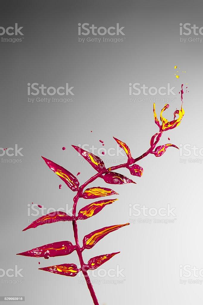 Beautiful yellow and purple paint plant stock photo