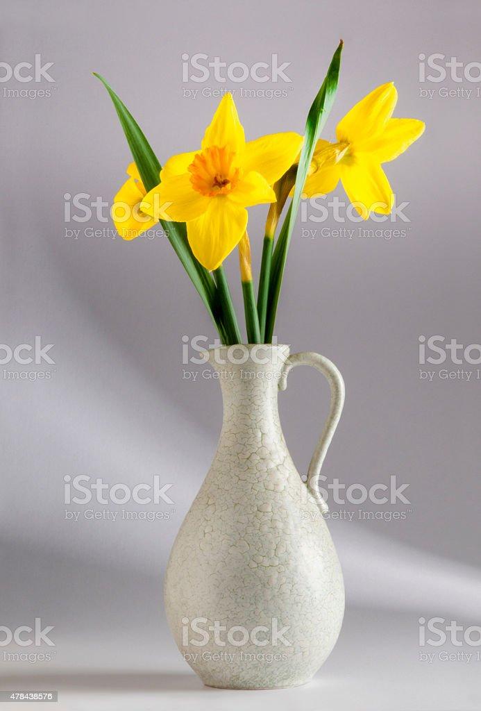 Beautiful yellow daffodils vivid classic vase jar light effect background stock photo