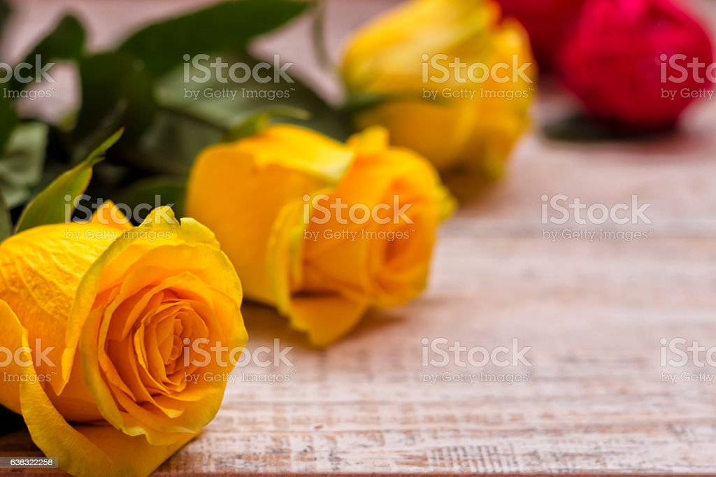Beautiful yellow roses on a wooden background stock photo