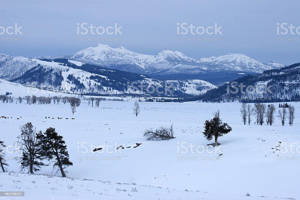 Beautiful Yellowstone NP Winter Mountain View of Lamar Valley stock photo