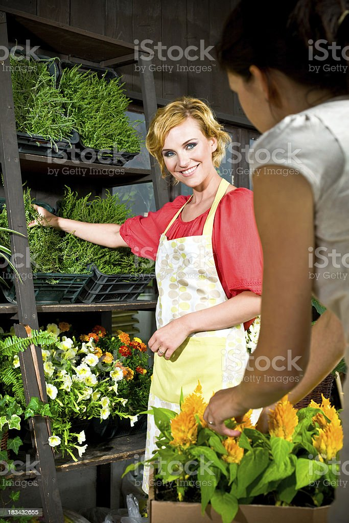 Beautiful young florist at work royalty-free stock photo