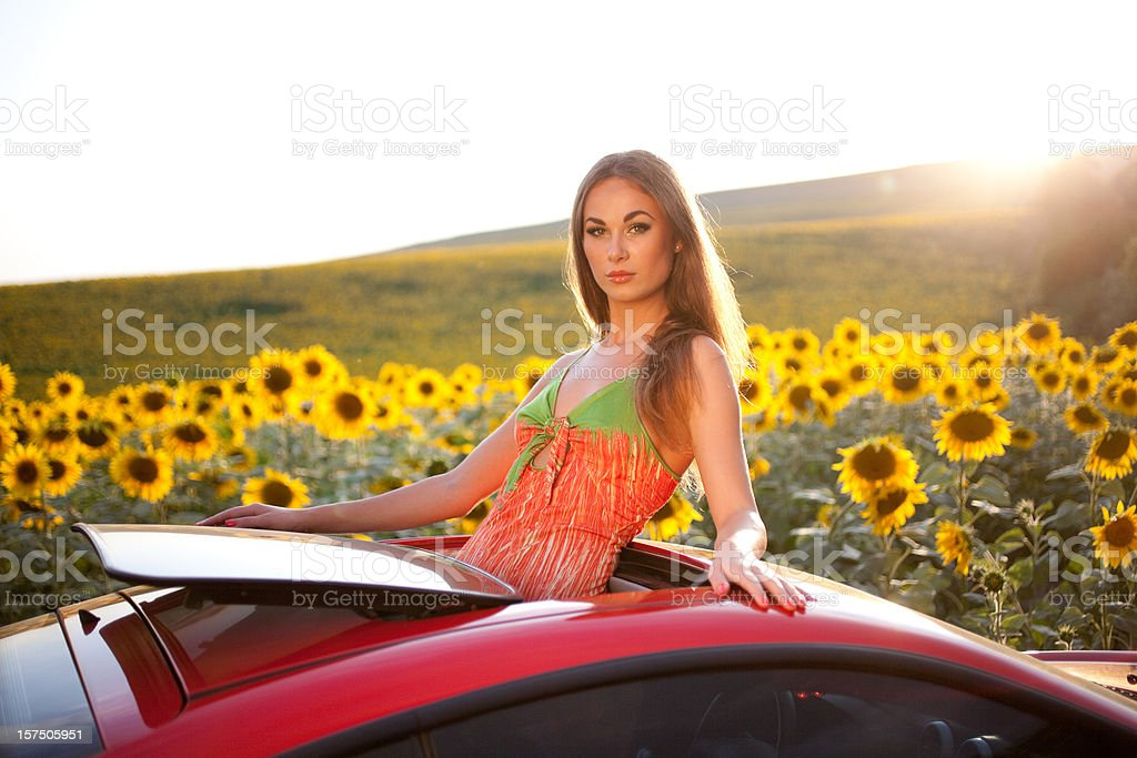 beautiful young girl in a field of sunflowers royalty-free stock photo