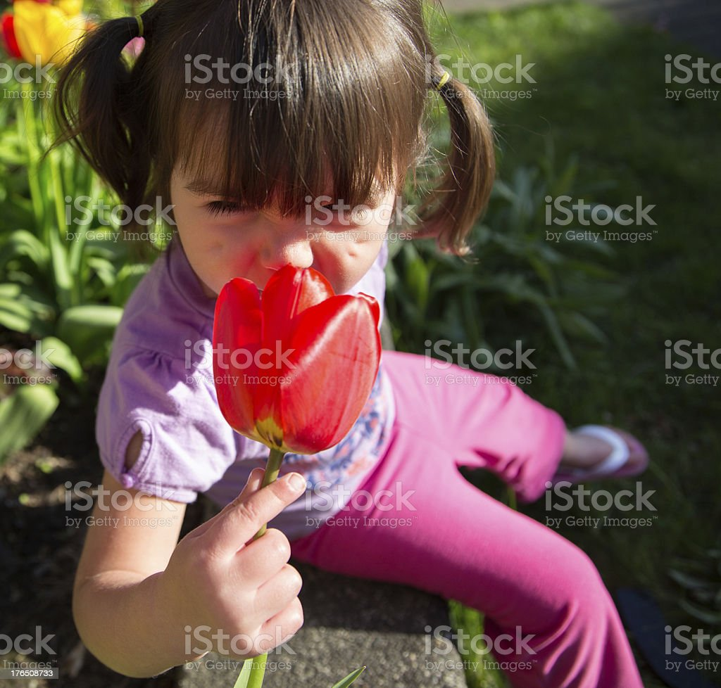 Beautiful Young Girl Smelling A Tulip Flower in the Garden royalty-free stock photo