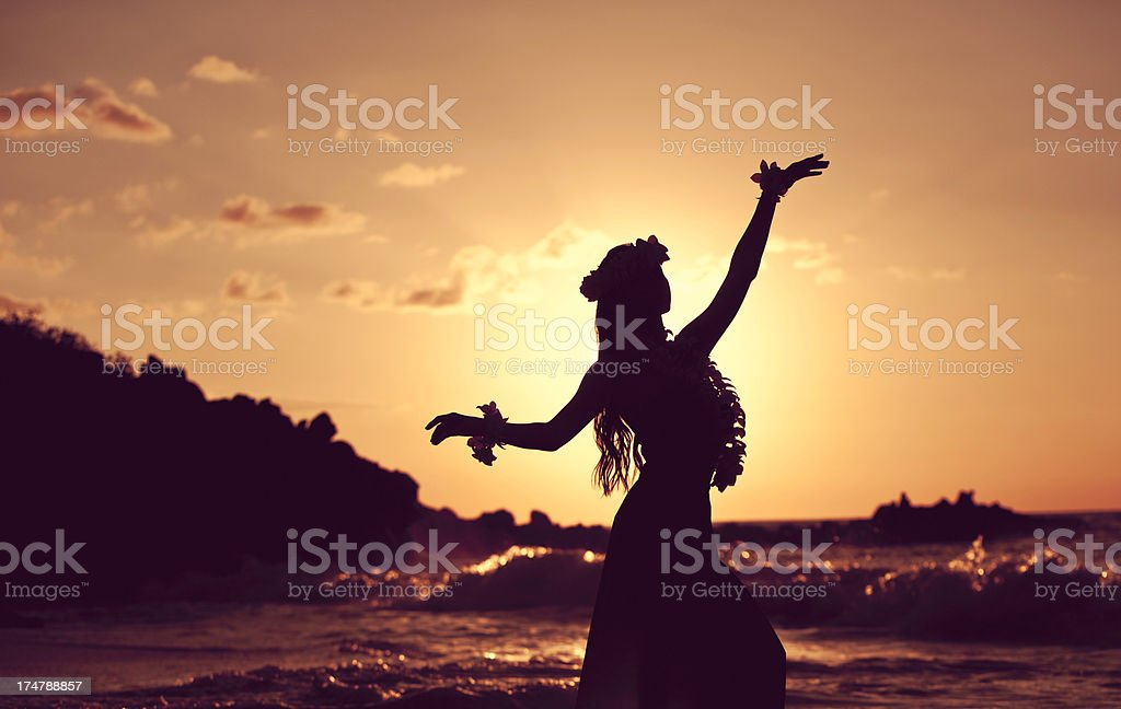 Beautiful Young Hula Dancer stock photo