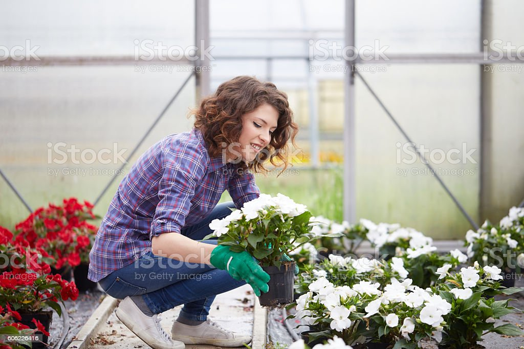 beautiful young lady in plant nursery stock photo