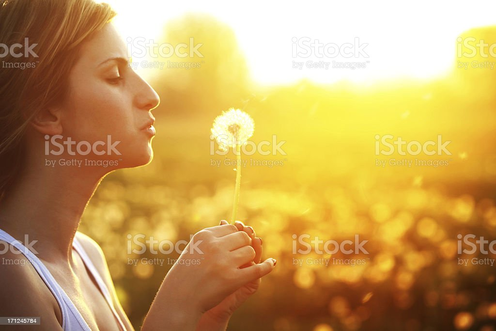 Beautiful young woman blowing a dandelion royalty-free stock photo