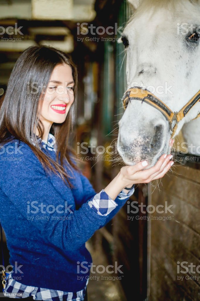 Beautiful  young woman feeding white horse stock photo