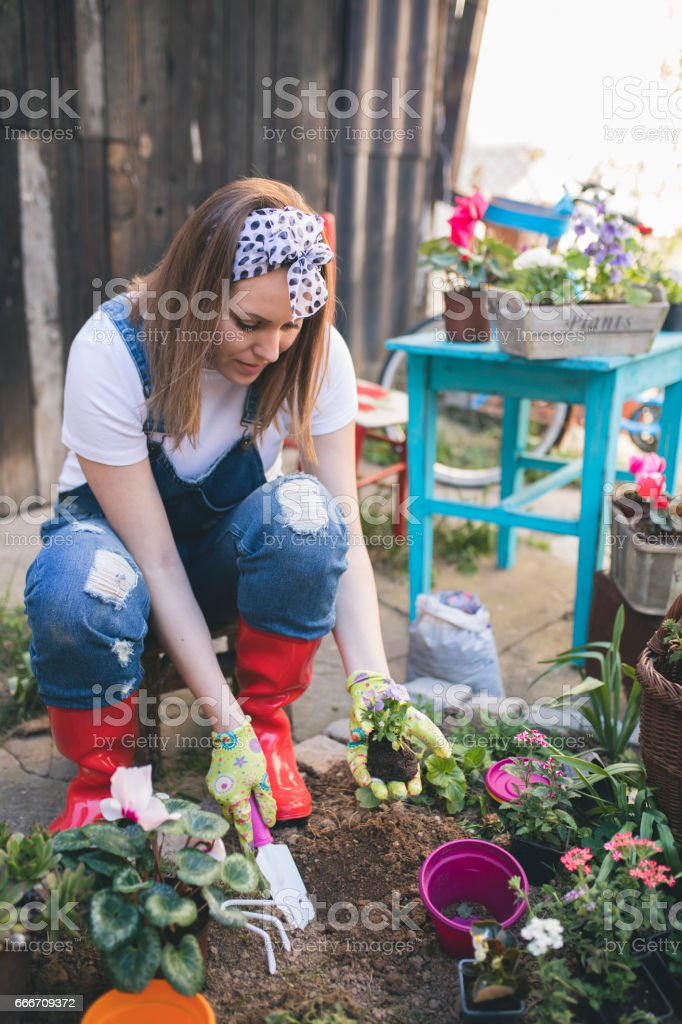 Beautiful young woman gardening in the spring time stock photo