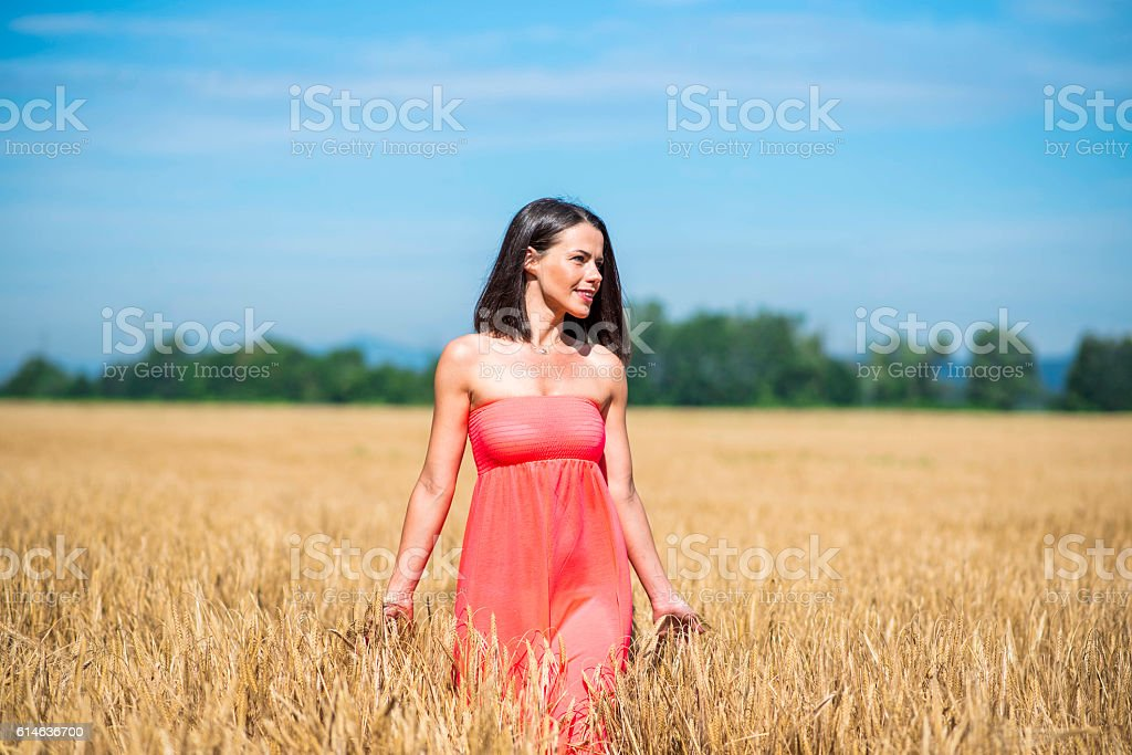Beautiful young woman in wheat field stock photo