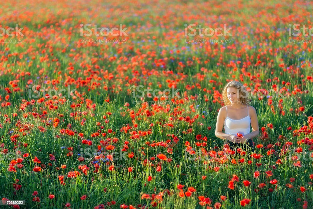 beautiful young woman standing in a poppy field stock photo
