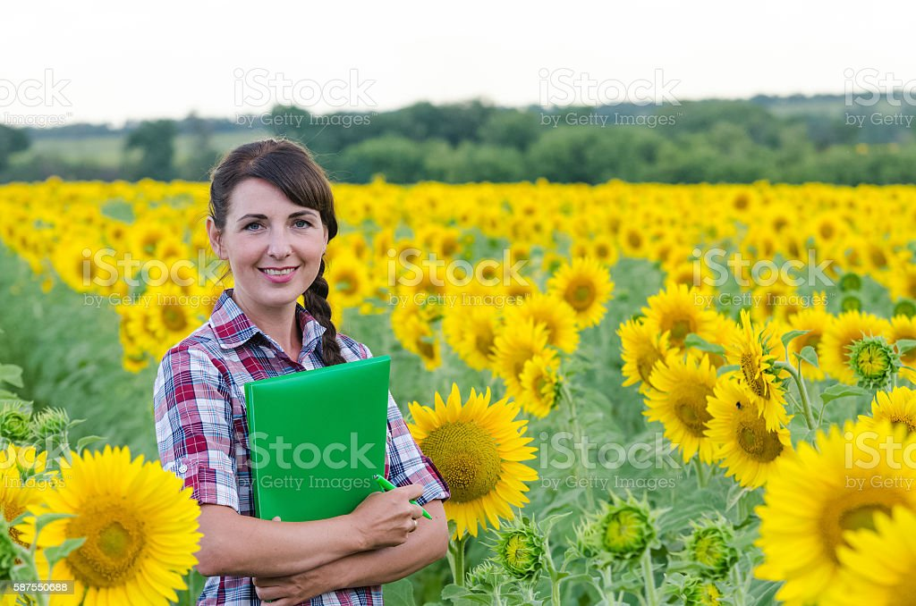 Beautiful young woman standing in sunflower field stock photo