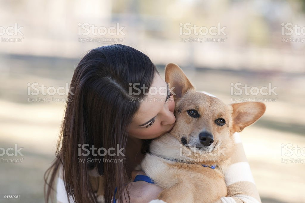 Beautiful young woman with a dog stock photo