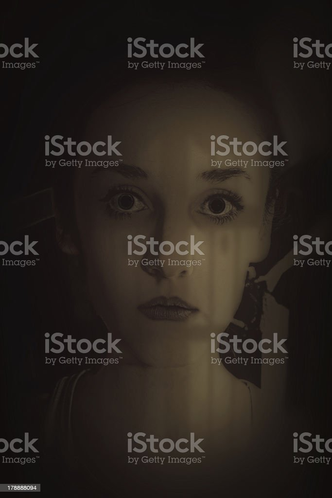 beautiful young woman's face royalty-free stock photo