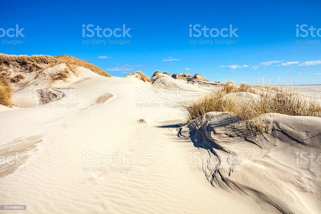 Beautifull dunes of Amrum stock photo