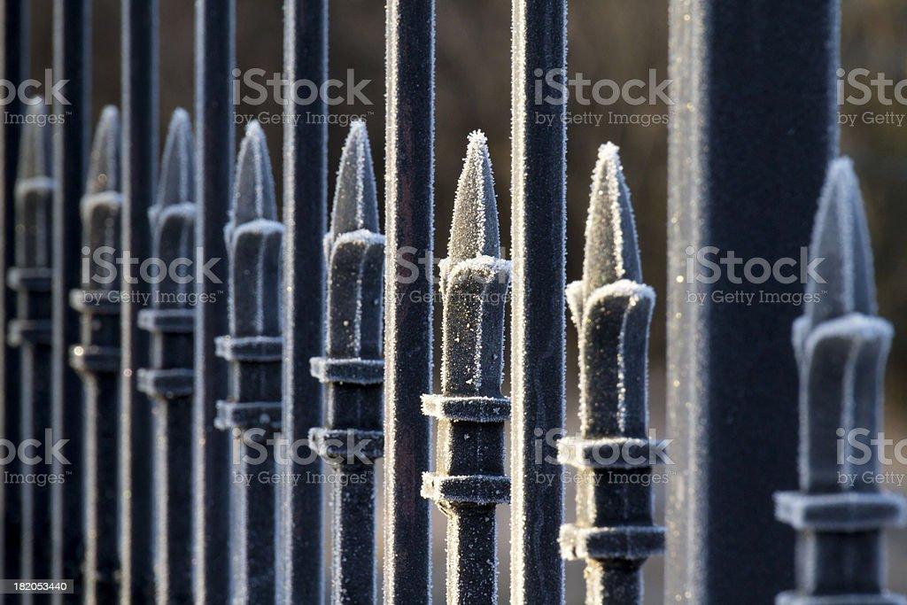 Beautifully Frosted Ornate Wrought Iron Fence At Sunrise stock photo