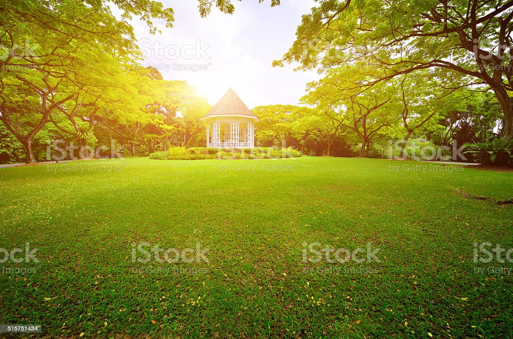 Beauty and Tranquil Garden stock photo