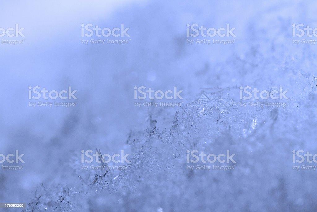 beauty blue snowflake crystals royalty-free stock photo
