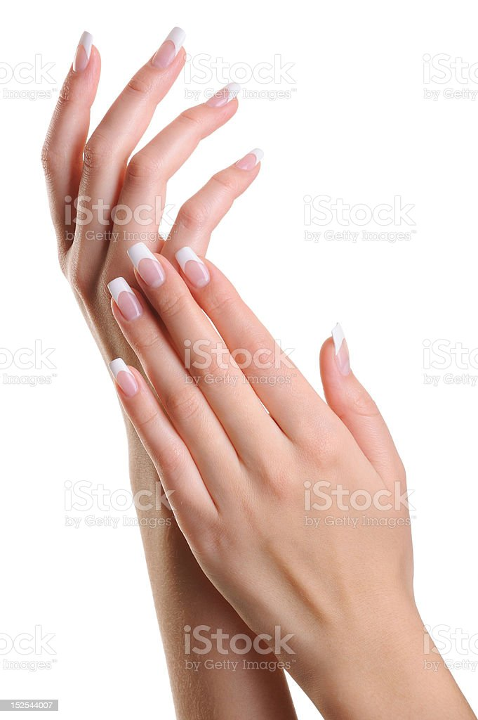 Beauty elegant female hands with french manicure royalty-free stock photo