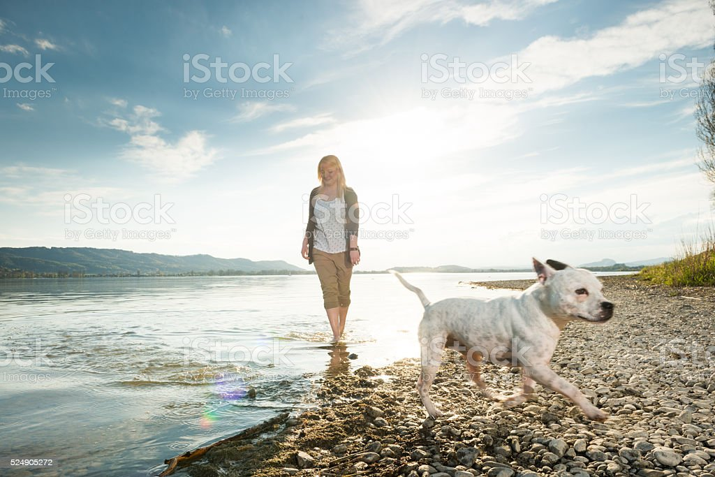 Beauty enjoying freetime with her dog stock photo