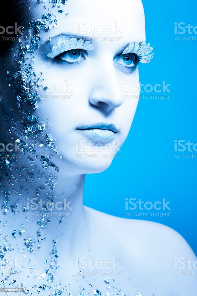 Beauty Face with Silver Cool Makeup royalty-free stock photo