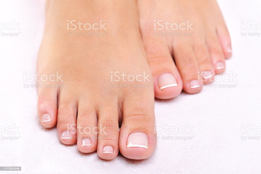 beauty female feet stock photo