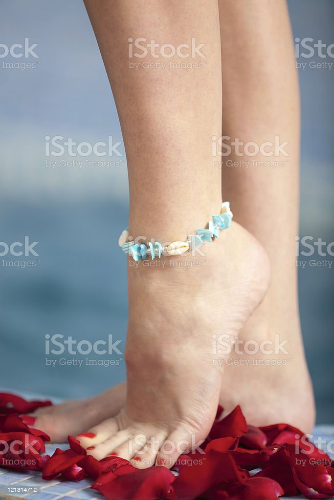 Beauty female feet  with petals of  roses. stock photo