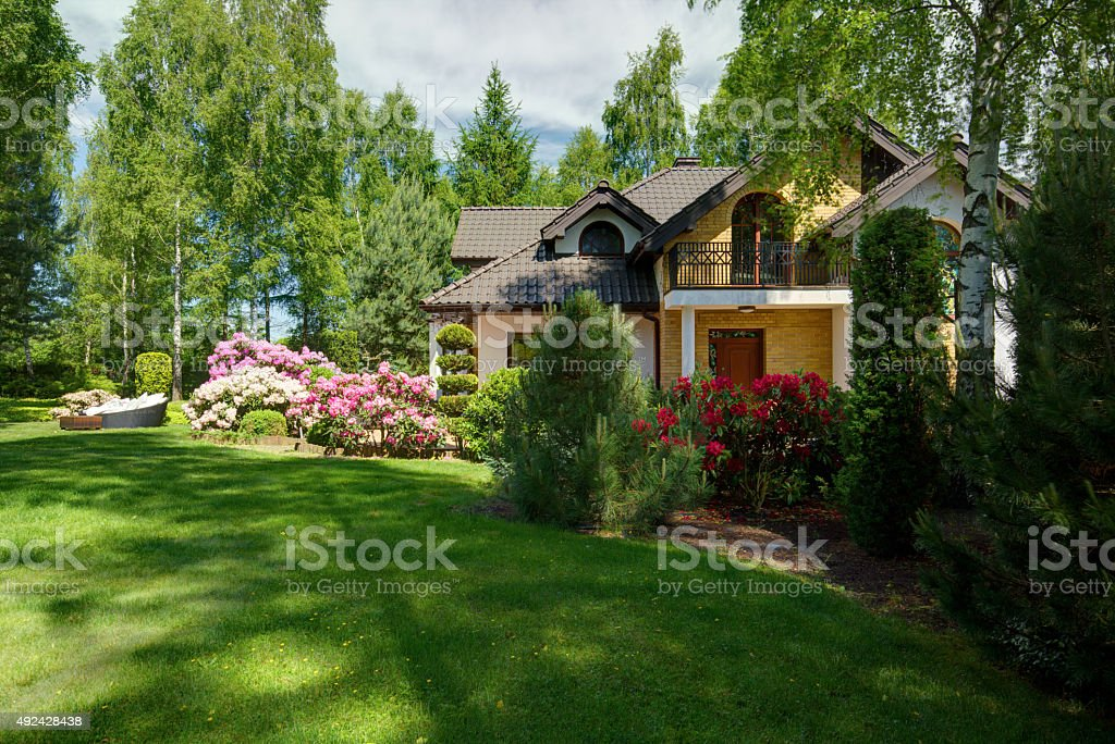 Beauty green lawn stock photo