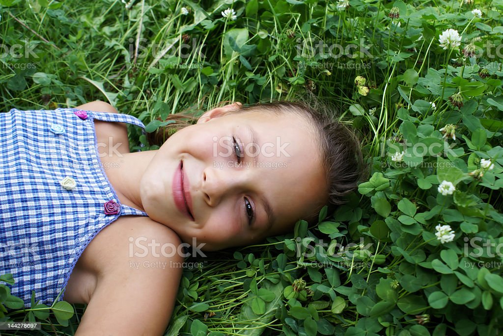 Beauty in clover 1 royalty-free stock photo