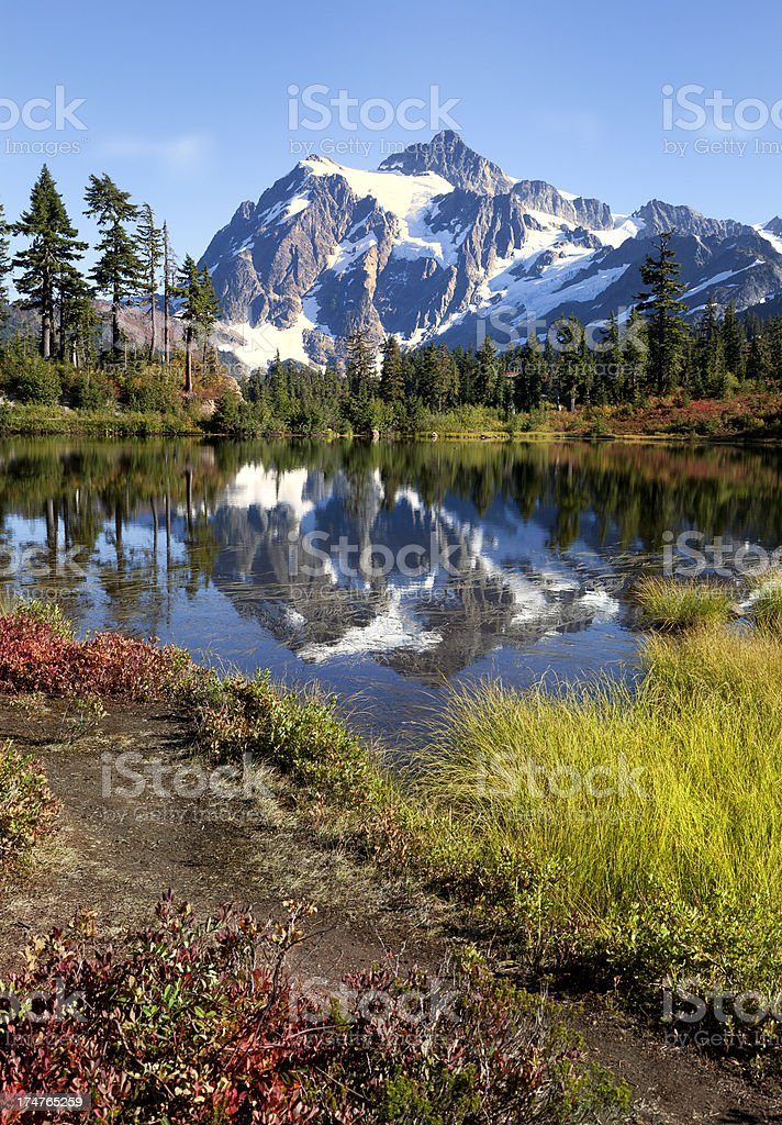 Beauty in Nature royalty-free stock photo