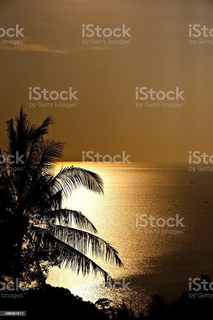 Przyrody Krajobraz z Złoty zachód słońca nad morzem w tle, PH zbiór zdjęć royalty-free