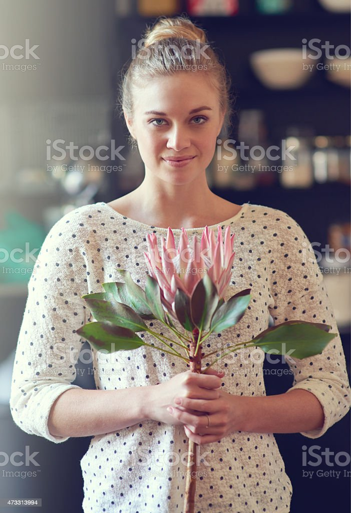 Beauty of fynbos stock photo