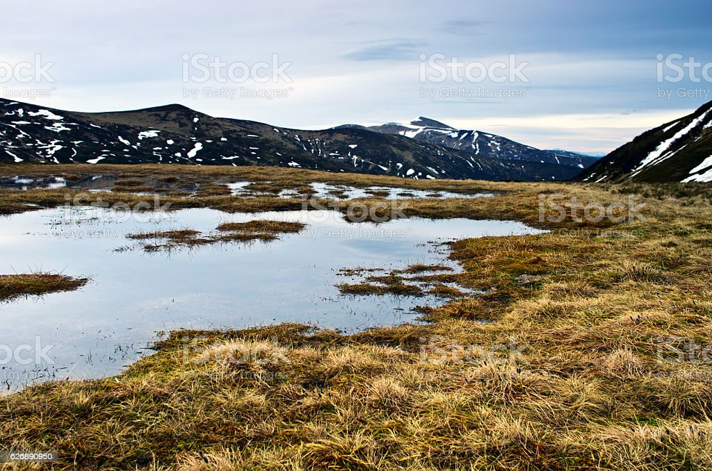 Beauty of Northern nature. Northern lake in spring. stock photo