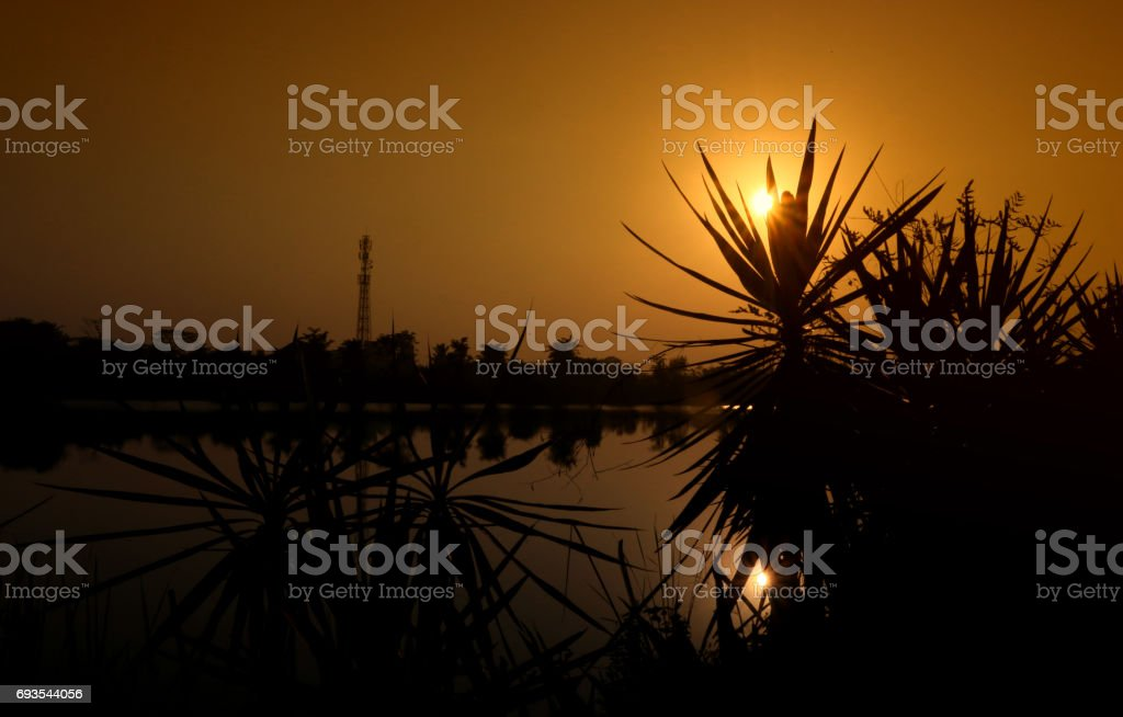 Beauty of sunrise stock photo