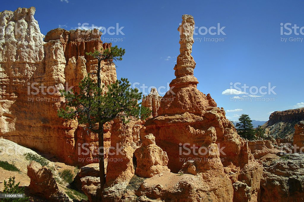 Beauty of the Bryce Canyon stock photo