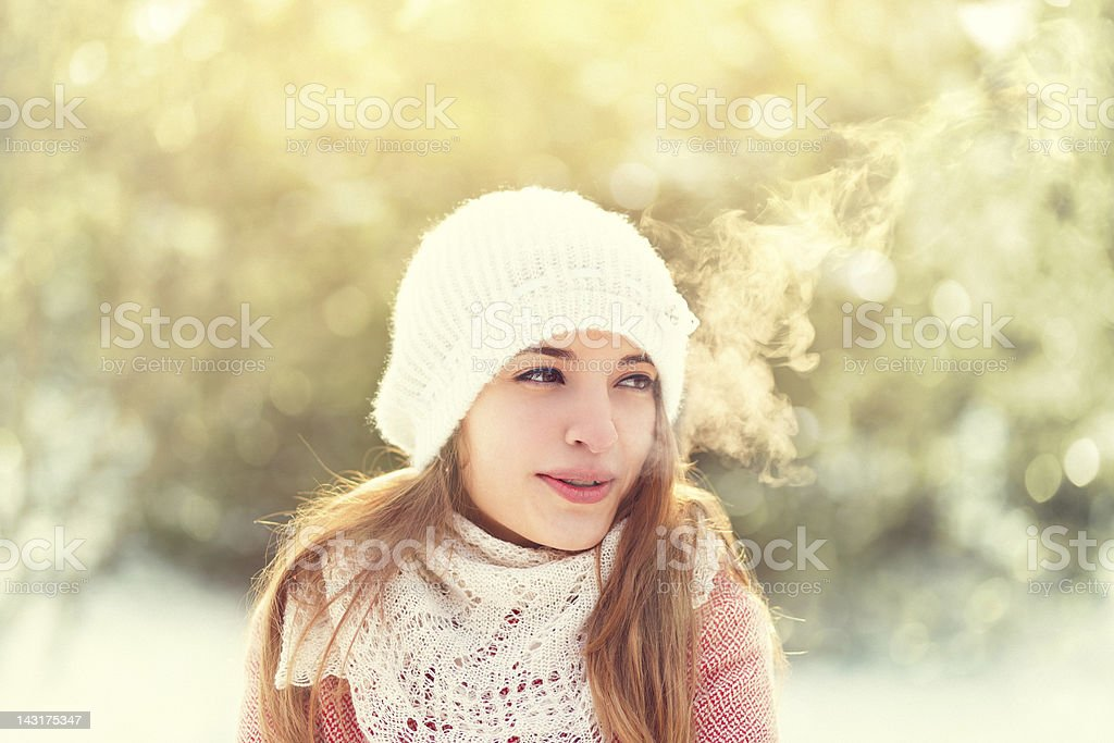 beauty on cold winter day stock photo