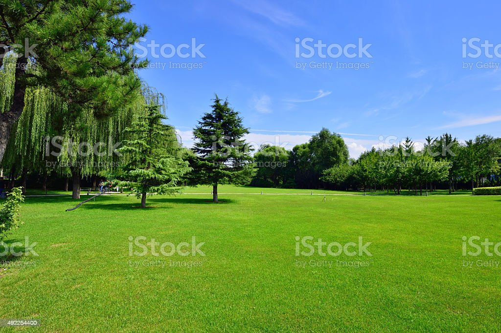 Beauty Peaceful Garden stock photo