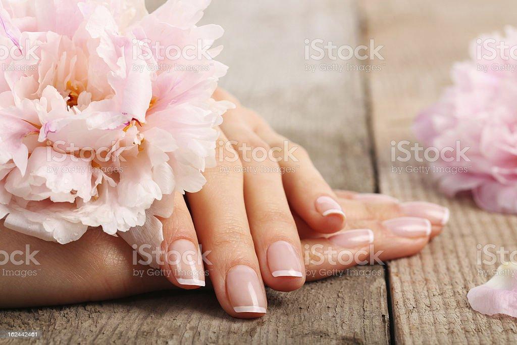 Beauty treatment photo of nice manicured woman palms stock photo